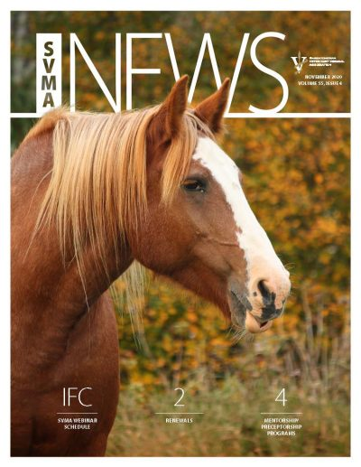 Cover SVMA_NOV2020_web