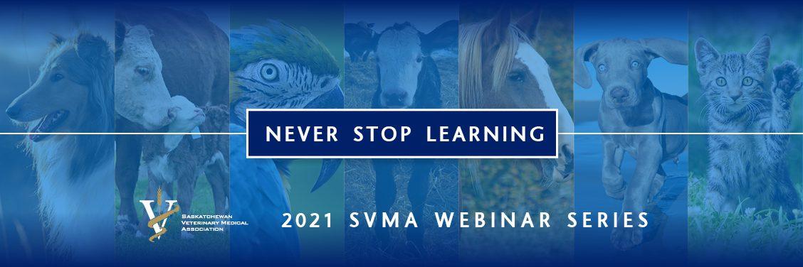 SVMA web banner_v2