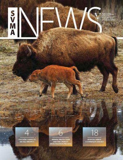 SVMA_Feb2020_cover
